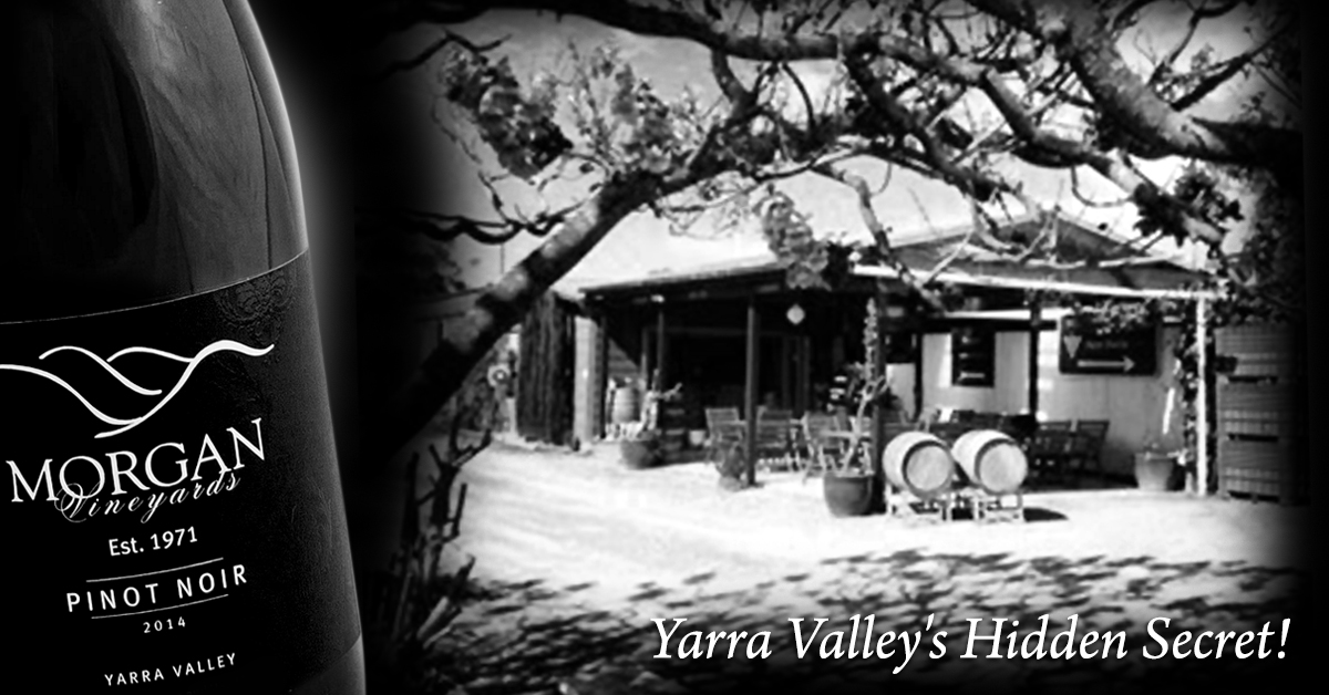 FB_Morgan_Vineyards_1200x628_2