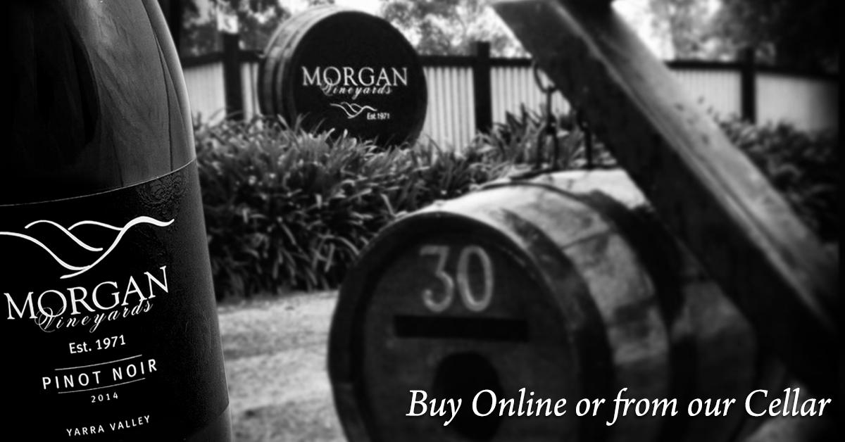 FB_Morgan_Vineyards_1200x628_4