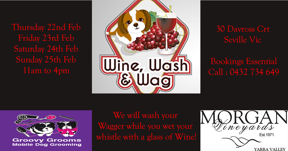 Wine, Wash & Wag